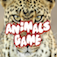 Animals Game*